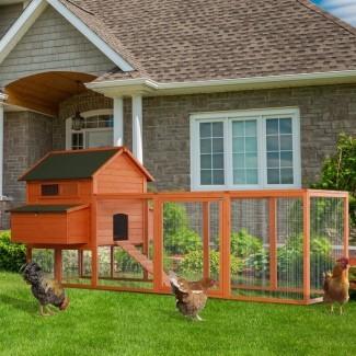 Gallinero Camara Deluxe al aire libre con nido y gallinero