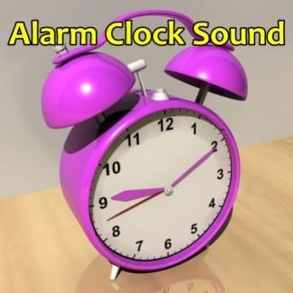 Homedics Nature Sound Clock: Nature Sound Alarm Clock ...