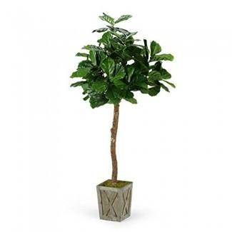 D&W Silks 6 ft. Fiddle Leaf Fig Tree en caja de madera desgastada