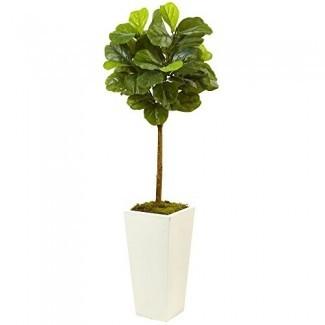 Casi natural 5966 4.5 'Fiddle Leaf Fig en blanco Jardinera (Real Touch)