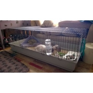 Ferplast 140 Gran jaula interior para conejos / conejillos de Indias | en ...