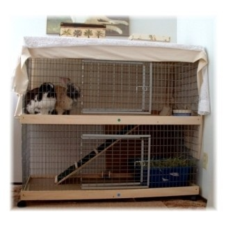¿Por qué una jaula de conejo interior grande es buena para tu