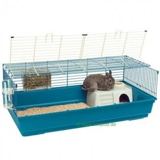 Se buscan grandes jaulas de conejos para interiores | Victoria Pet Adoption ...