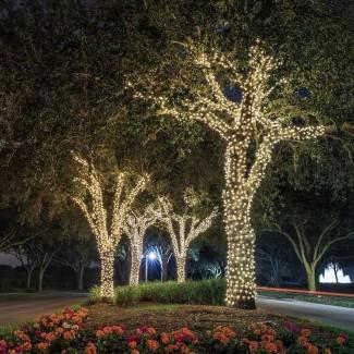 ORA 100 LED luces de cadena al aire libre con energía solar, brillante ...