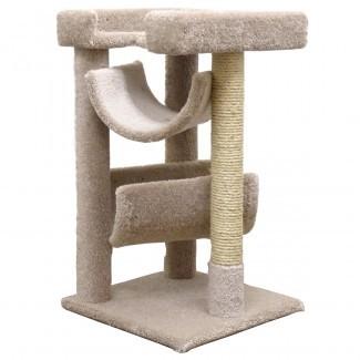 Planes geniales de árboles de gato: árboles cat ... Obras de alfombras cubiertas de