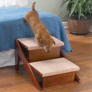 Escalera para mascotas convertible de 2 escalones