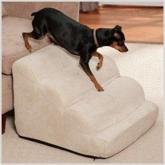 Escaleras para perros para camas altas - Sin categoría: Diseño de interiores