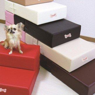 Escaleras para perros para rampa de cama alta: conocer antes de construir