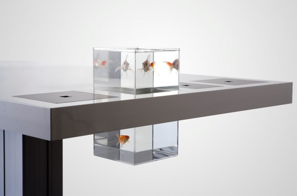 escritorio de leche goldfish
