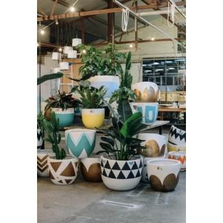 Macetas grandes para plantas de interior 26