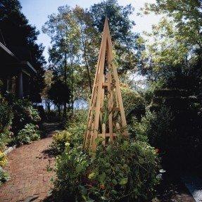 Obelisco en cedro