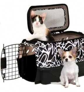 Transportín para mascotas híbrido de carga superior Curvations