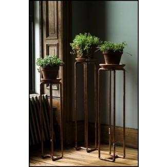 Soportes para plantas con pedestal en el interior