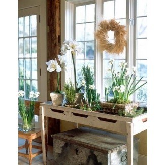 Mesa para plantas de interior